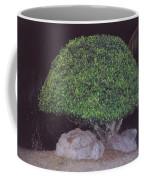 Shaped Tree Coffee Mug