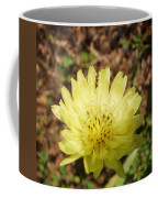 Shared Beauty Coffee Mug