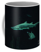 Sharks-09433 Coffee Mug