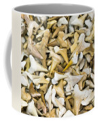 Sharks Teeth Coffee Mug