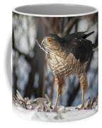 Sharp-shinned Hawk And Feather Coffee Mug