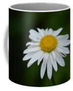 Shasta Coffee Mug