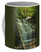 Shawnee Falls Coffee Mug