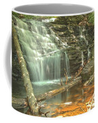 Shawnee Falls At Ricketts Glen Coffee Mug