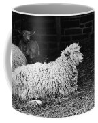 Sheep 2 Coffee Mug