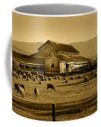 Sheep And Barn Coffee Mug