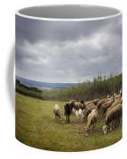 Sheep Pasturing Coffee Mug