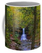 Sheldon Reynolds Falls And Kitchen Creek Coffee Mug