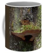 Shelf Mushroom With Moss Coffee Mug