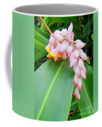 Shell Ginger Coffee Mug
