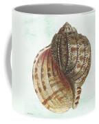 Shell Treasure-c Coffee Mug
