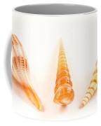 Shell Trio Coffee Mug by Jean Noren