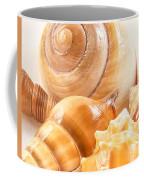 Shells Coffee Mug by Jean Noren