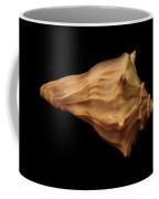 Shells Of The Gulf Coast 9 Coffee Mug