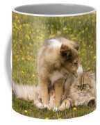 Sheltie Puppy And Persian Cat Coffee Mug