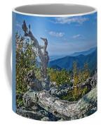 Shenandoah Vista Coffee Mug