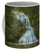Shenandoah Waterfall Coffee Mug