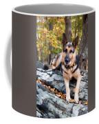 Shepherd In The Fall Coffee Mug