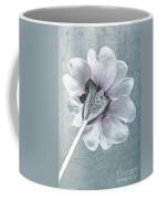 Sheradised Primula Coffee Mug by John Edwards