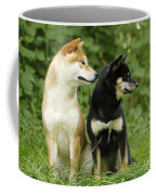Shiba Inu Dogs Coffee Mug
