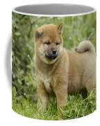 Shiba Inu Puppy Dog Coffee Mug