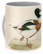 Shieldrake Coffee Mug