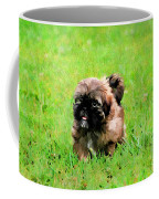 Shih Tzu Puppy Coffee Mug