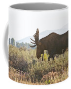 Shiras Bull Moose Coffee Mug