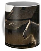 Shire Horse Coffee Mug