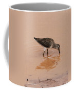 Shore Bird At Whitewater Draw Coffee Mug