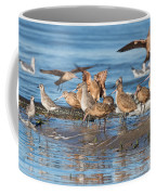 Shorebirds Flocking At Bodega Bay Coffee Mug