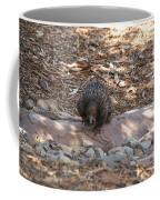 Short-beaked Echidna Coffee Mug