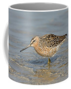 Short-billed Dowitcher, Breeding Coffee Mug