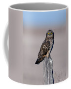 Short Eared Owl Coffee Mug