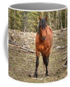 Show Down At Sun Down Coffee Mug