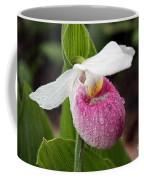 Showy Lady's Slipper Coffee Mug