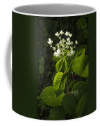 Shrub With White Blossoms Coffee Mug