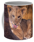 Shy African Lion Cub Wildlife Rescue Coffee Mug