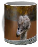Shy Bird Coffee Mug