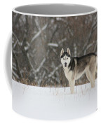 I've Been Spotted Coffee Mug