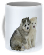 Siberian Husky Puppies Coffee Mug