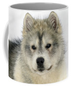 Siberian Husky Puppy Coffee Mug