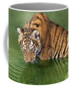 Siberian Tiger Cub In Pond Endangered Species Wildlife Rescue Coffee Mug