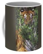 Siberian Tiger In Hiding Wildlife Rescue Coffee Mug