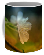 Side View Of An Apple Blossom Coffee Mug