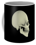 Side View Of Human Skull Coffee Mug by Stocktrek Images