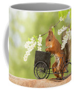 Side View Of Red Squirrel Playing Coffee Mug