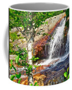 Side View Of Southeast Brook Falls In Gros Morne Np-nl Coffee Mug