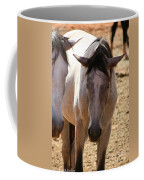Siesta  Coffee Mug