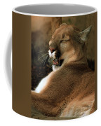 Siesta Time Coffee Mug